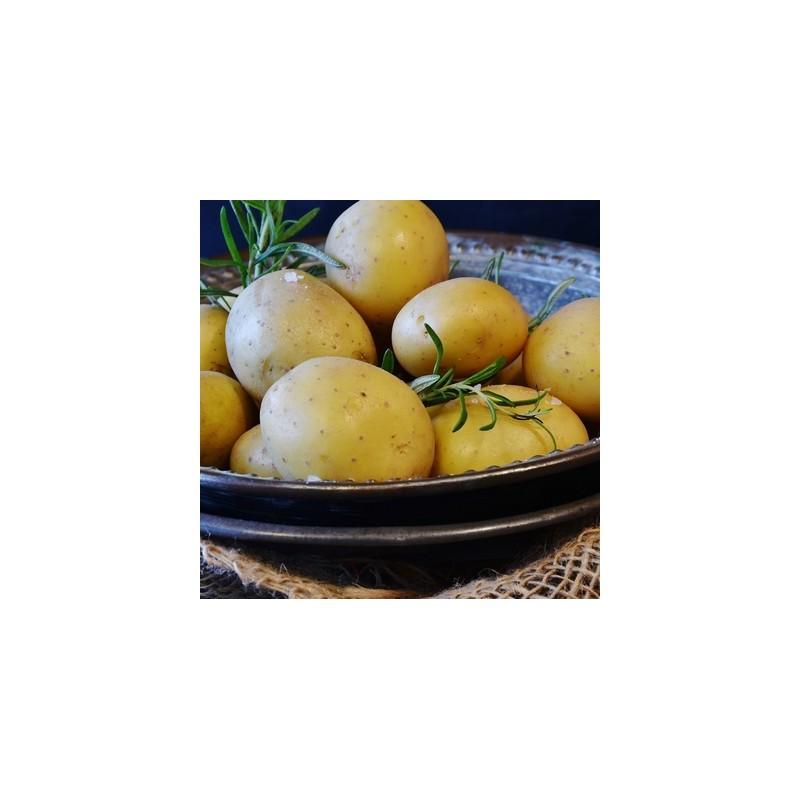 Bio92-pommes de terre Bio françaises