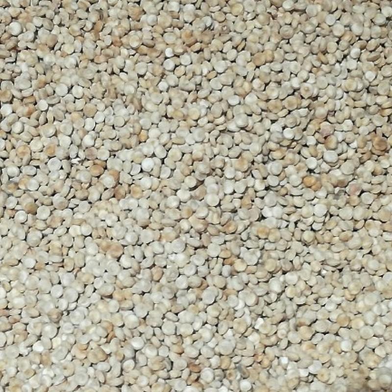 Bio92-quinoa-bio-francais-coopérative-biocer