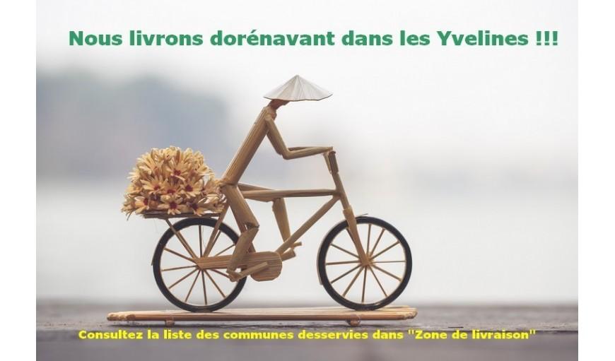 Livraison dans les Yvelines (78)